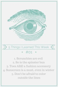 5 Things I Learned This Week {adailypinch.com}