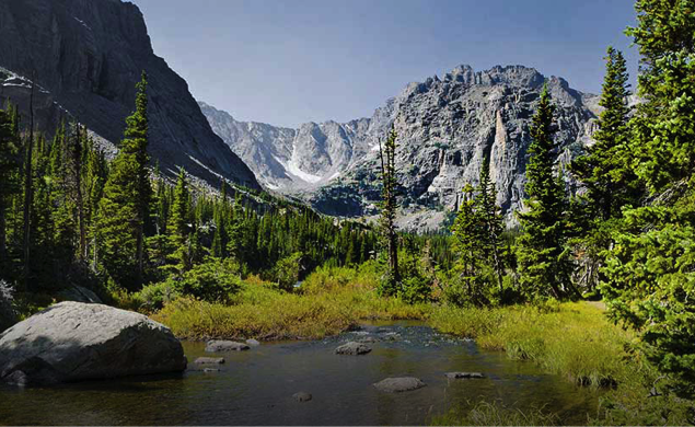 Discover the Forest with the U.S. Forest Service #Naturehood